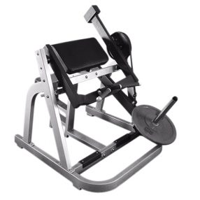 Muscle D Seated Arm Curl