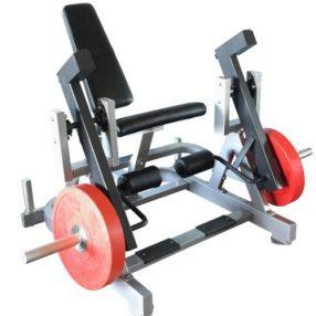 Muscle D Leg Extension