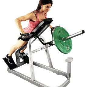 Muscle D Leverage Row