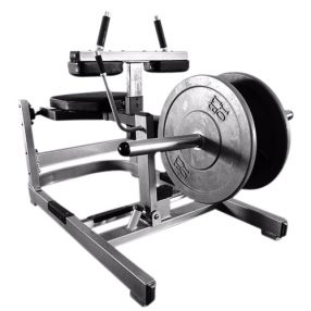 Muscle D Seated Calf