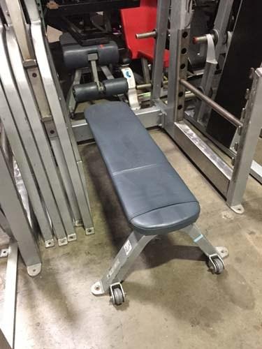 (2) Freemotion Flat Bench